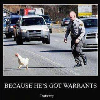 cop and chicken